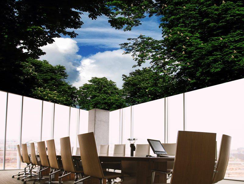 טפט מעוצב | טפט תקרה | שמים דרך צמחייה