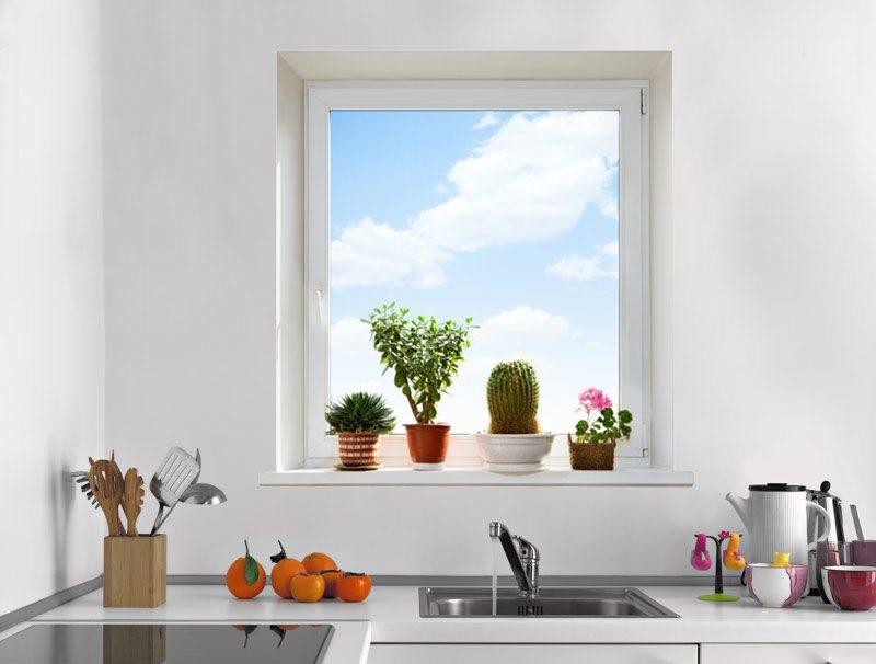 מדבקת קיר | חלון עם נוף של שמים ועציצים